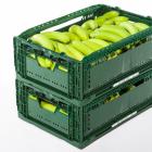 Коробки из пластика для еды — удобное хранение продуктов